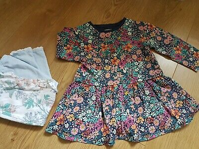 Next Baby girl clothes bundle 12-18 months