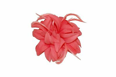Ladies Coral Petals and Feathers Fascinator on Hair Clip & Brooch Women UK