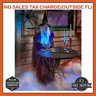 Life Size Psychic WITCH Haunted House Decoration Prop Crystal Ball HALLOWEEN