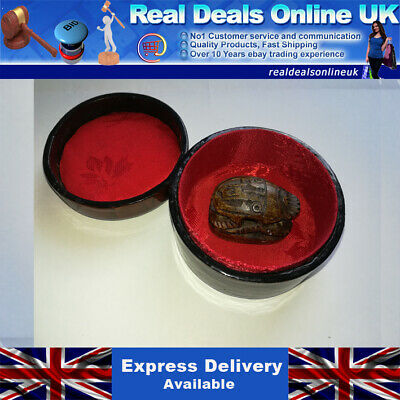 EGYPTIAN SCARAB SEAL Hand Carved Stone Antique Egypt BEETLE Vintage box inc