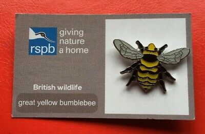 RSPB-British Wildlife GREAT YELLOW BUMBLEBEE  Pin Badge (FR).