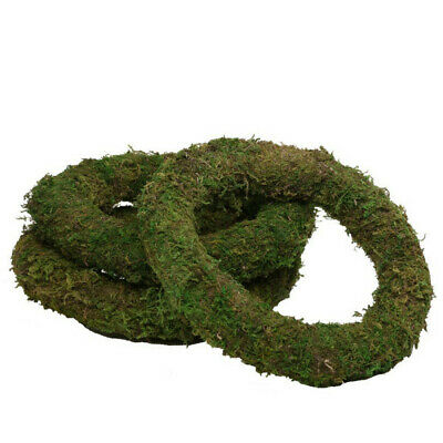 10 Inch (25cm) Moss Wreath Ring Christmas Wreath Making Holidays