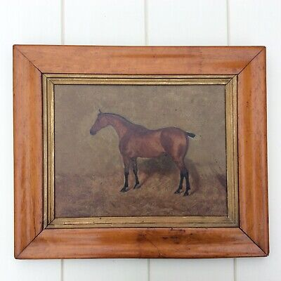 George Paice Portrait of a Horse
