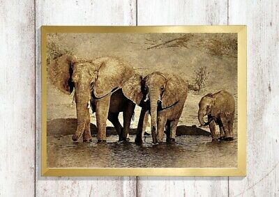 ELEPHANT Print a4 picture poster unframed WATERCOLOUR EFFECT WALL ART 3