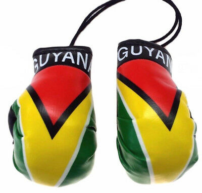 Vóór 1939 Guyana Guyanese Flag Mini Boxing Gloves Car Rearview Ornament Culture 4