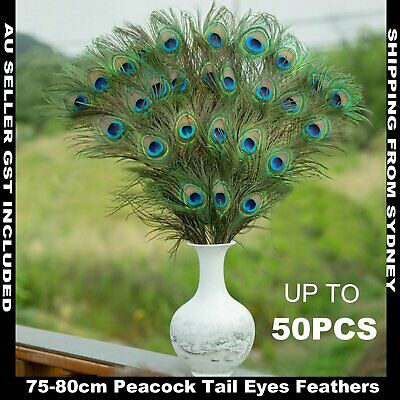 10-50X Natural Peacock Tail Eyes Feathers 75-80cm DIY Craft Vase Decor Millinery