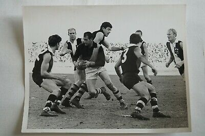 Richmond Tigers AFL VFL Vintage In Action B&W 10x8 Finals Photograph Fred Swift