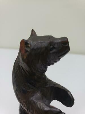 Large Black Forest Bear sewing? 5 3/4'' 1880's glass eyes