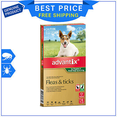 ADVANTIX Up to 4 Kg for Small Dogs 6 Pipettes GREEN Pack Flea and Tick Control