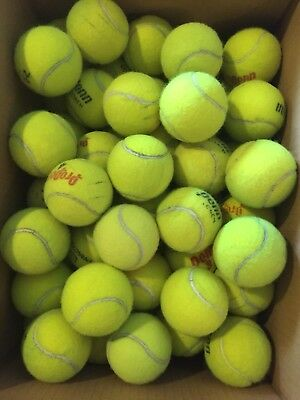 30 MIXED Tennis Balls PENN Wilson Dog Toy And Other Projects LOT