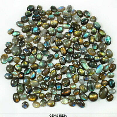 1000 Carat/172 Pcs Natural Rainbow Shine Labradorite Mixed Cab Gems For Jewelry