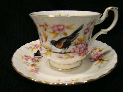 Royal Albert Bone China Woodland Series Tea Cup and Saucer - Redwing