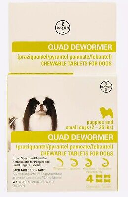Bayer Quad Dewormer SMALL Dogs (2-25lbs) 4 Chewable Tablets NEW