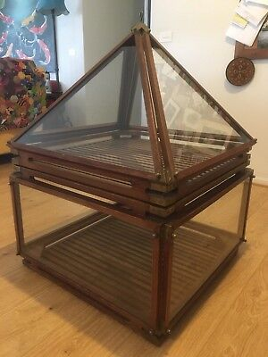 Reproduction Victorian era Wardian plant transport/display case glasshouse
