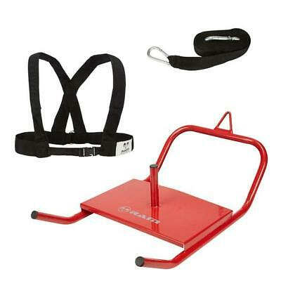 Speed Sled & Harness