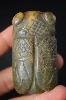 Chinese hongshan culture old jade carved *cicada* amulet pendant    A8
