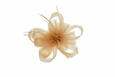 GIZZY® Ladies Taupe, Beige, Loops, Flowers and Feathers Fascinator on Hair Clip.