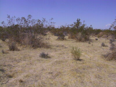 23.59 Acres In California City $17,995 $100 Down $199 Per Month 7%Apr