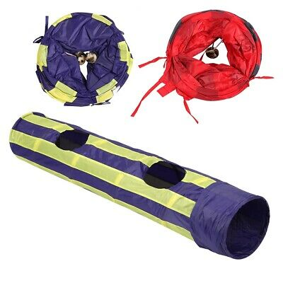Pet Cat Tunnel Toys Rabbit Tube Collapsible 2 Hole Puppy Kitten Play Toy