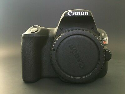 Canon EOS Rebel SL2 24.2MP- Black (Kit with EF-S 18-55mm) with Accessories
