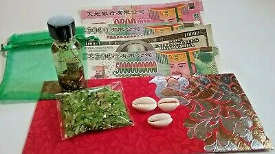 Money Mojo Bag with Money Oil Hell Bank Notes Hoodoo Wicca Kit New Age Pagan