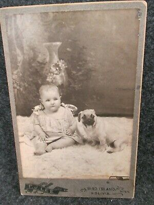 Original Little Girl Baby With Her Dog Cabinet Card Photo Excellent