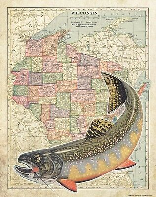 Brook Trout Unlimited Fly Fishing Club North Carolina Map Art Print Flies MAP51