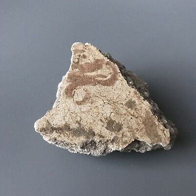 RARE! Ancient Roman Wall Plaster Fragment With Original Paint