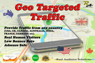 Bring Real Country Targeted Human Visitors 200-400 Visitors for 30 Days