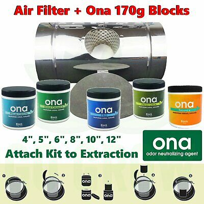 Ona Air Filter + FREE 170g Blocks
