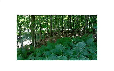 Paved Road -Beautiful Maple Wooded Lot-100' X 100' Crystal Falls, Michigan