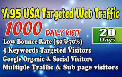 Drive Fast Usa Targeted Website,traffic,daily Visitors 20 Days & 03 Keywords
