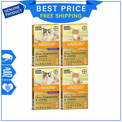 ADVOCATE for Cats Heartworm Flea Worm Prevention 12 Pipettes FREE Shipping