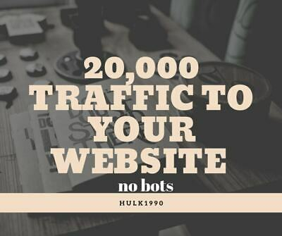 Send 20,000 Human Traffic Real Visitors Dashboard of Your Visitorstraffic Demon