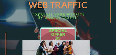 Send You High Quality Traffic and Targeted Unique Visitors You Ranking Website