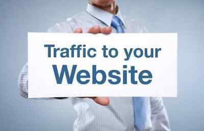 Drive Quality Traffic That Converts Daily Visitors to Your Website or Blog