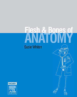 The Flesh and Bones of Anatomy by Susie Whiten (Paperback, 2006)