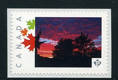 PICTURE POSTAGE   P  Maple Leaves frame   # 2591a  PERSONALIZED      MNH   #2