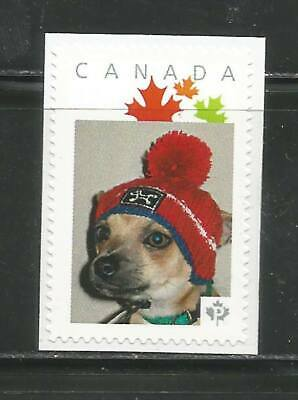 PICTURE POSTAGE   P  Maple LEAVES frame   # 2591a  PERSONALIZED    MNH * 6
