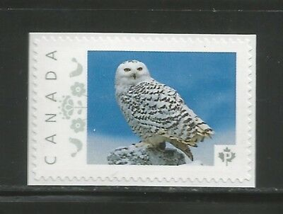PICTURE POSTAGE  P   Wedding Doves   # 2595a  PERSONALIZED     MNH  # 1