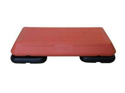 Fitness Ministep profesional 2 pies-12