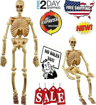 5' Life Size Plastic Skeleton Halloween Spooky Prop Haunted House Skeleton Decor