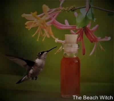 HUMMINGBIRD Ritual Oil, Potion, Anointing Oil~Wicca Witchcraft Pagan