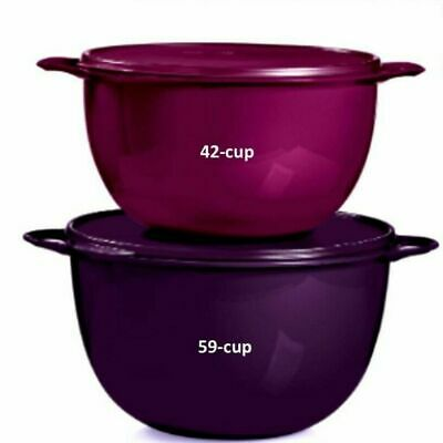 Tupperware Thatsa 2 Piece Bowl Set - Mega 42 Cup and Jumbo 59 Cup - NEW