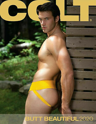 Colt Butt Male Calendar 2020 Arty Male Ass Bottom Pin-Up Gay / Straight