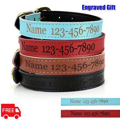 Pet Personalized Dog Collar Leather Padded Name ID Name Tag Engraved Custom SML