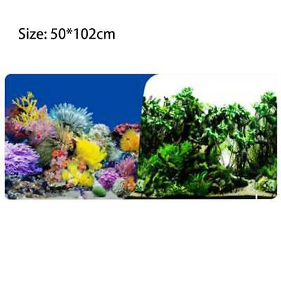 3d Fish Tank Aquarium Background Double Sided Wallpaper