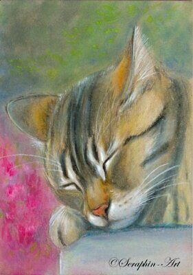 ACEO Original Painting Sleeping Tabby Cat Garden Watercolor Pencil Seraphin-Art