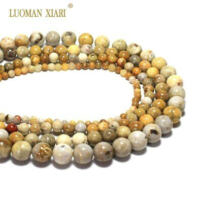 Wholesale AAA Natural Chrysanthemum Stone Coral Fossils Beads For Jewelry