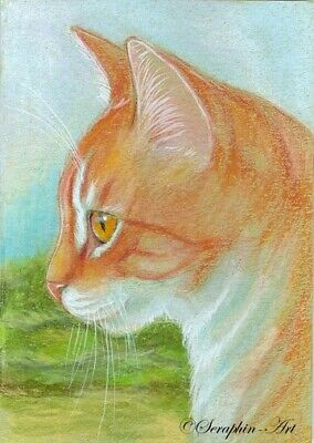 Tabby Cat Original ACEO Pencil Drawing Kitten Miniature Painting Seraphin-Art
